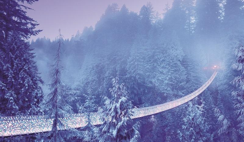 Capilano Suspension Bridge with Christmas Lights. North Vancouver, British Columbia, Canada
