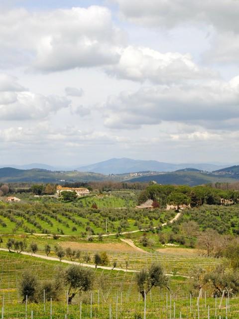 tuscany-228899_1920